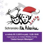 """""""Zostań naszym Mikołajem"""" – zbiórka dla bezdomnych zwierząt"""
